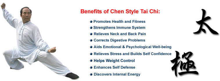 Chen style tai chi What is style